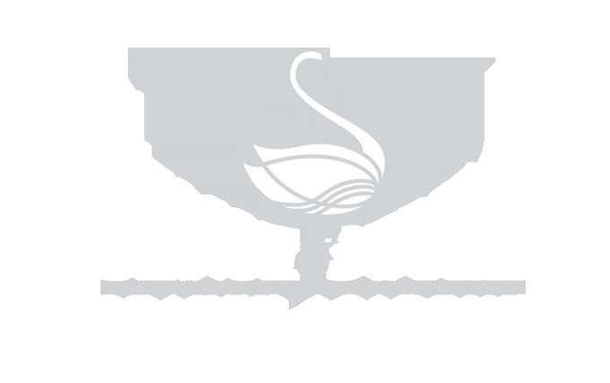 Sense and Style Logo
